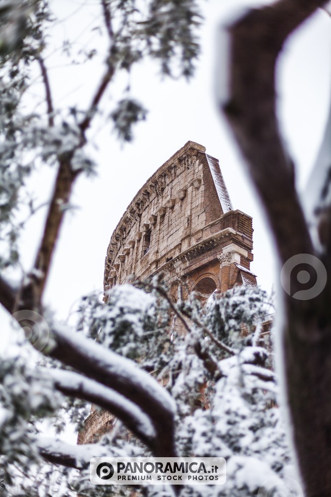A lovely day of snow in Rome, Italy, 26th February 2018: a beautiful view of Colosseum among an olive tree under the snow