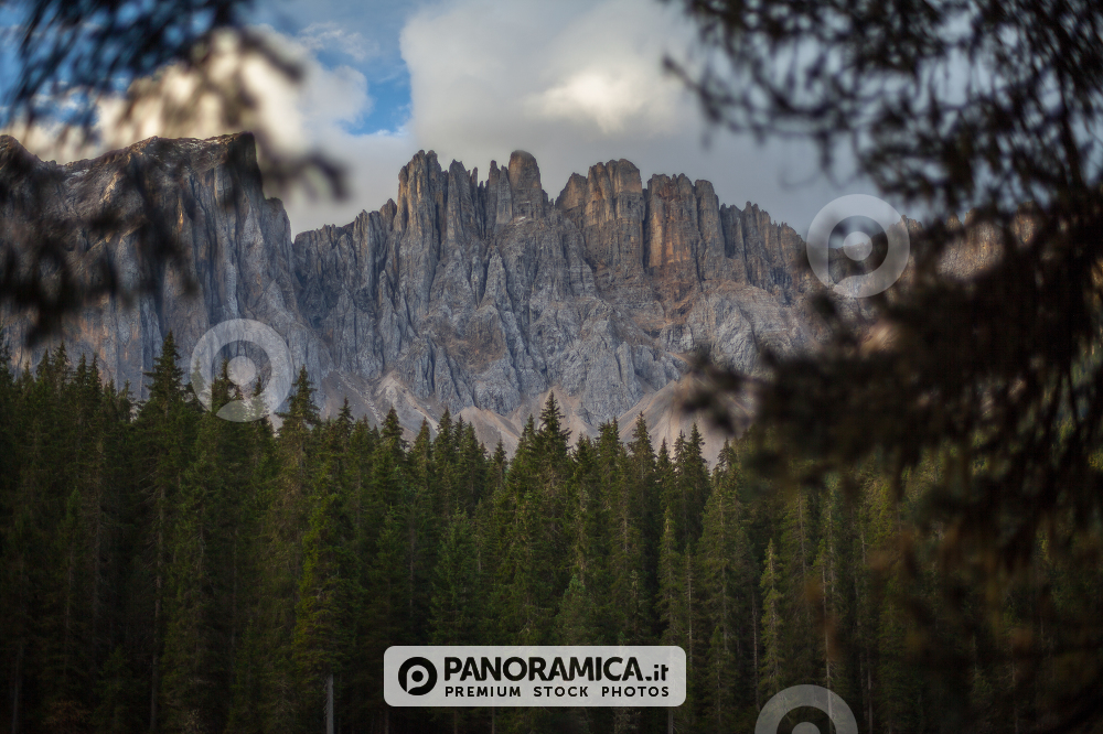 A view of the Mount Latemar, over the Lake Carezza, between two trees, Dolomites, Trentino Alto Adige, Italy