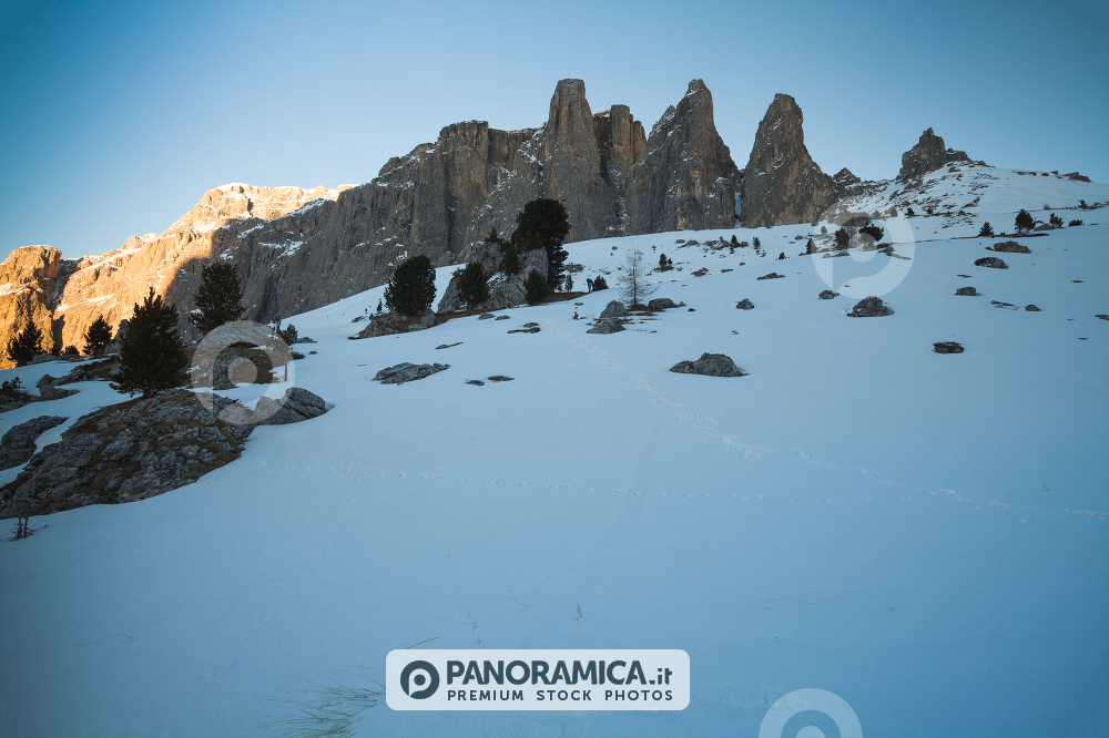 Sella Towers, Sella Pass, Dolomites, Trentino Alto Adige, Italy